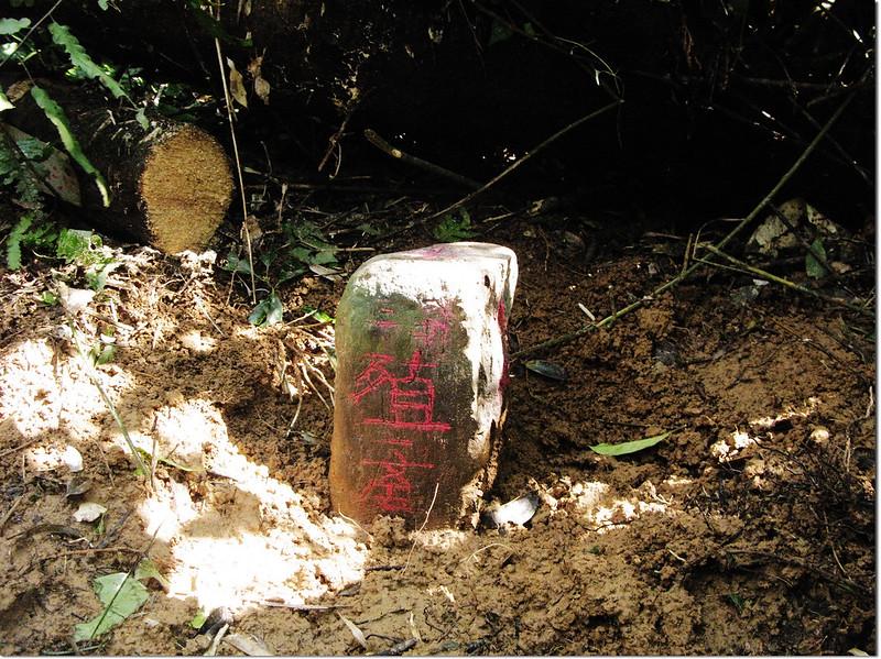港仔山西殖產局自然石森林三角點(Elev. 400 m) 2