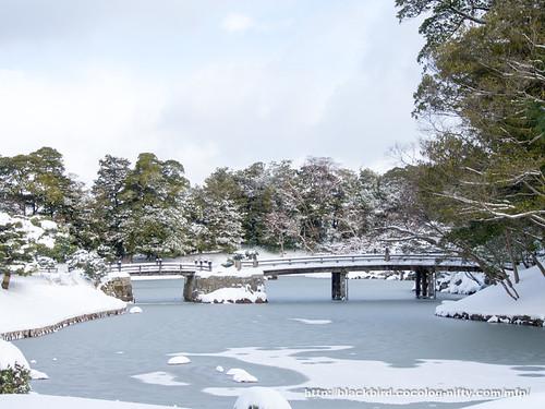 Snow day 20180125 #03