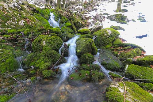 Parque Natural de Gorbeia #DePaseoConLarri #Flickr -66