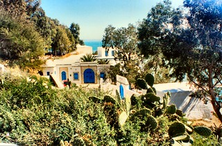 Typical in Tunisia