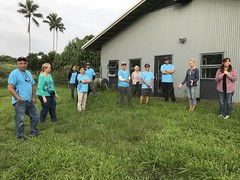 Hawaii Electric Light participates in the Hawaii Wildlife Center Clean-up - January 27, 2018: Volunteers clear weeds from fence line