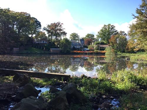 $35 Million Jack's Pond Project, Staten Island