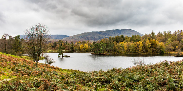 Tarn Hows and Coniston Fells