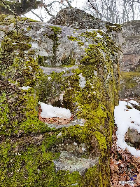 Necrópolis de Revenga y La Cerca con nieve 31