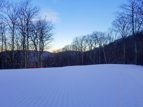 Groomer Corduroy in the Morning
