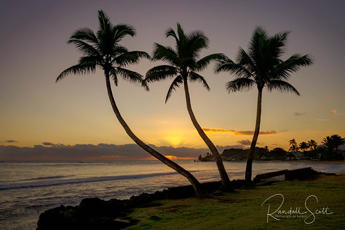 landscape hauula beachphotography hawaii seascape sunrise palmtrees tropical photographybyrandall
