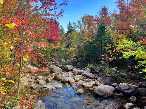 Autumn color in Baxter State Park, Maine. Photographer Ted Nelson