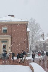 winter_campus, December 12, 2017 - 268.jpg