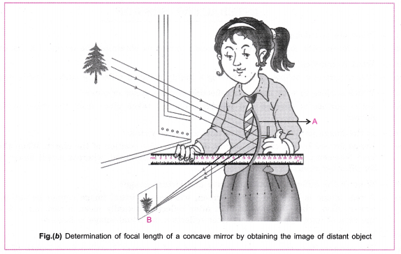 cbse-class-10-science-practical-skills-focal-length-of-concave-mirror-and-convex-lens-6