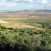 Small photo of Fertile Plain