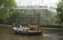 amsterdam.boat-08.2012