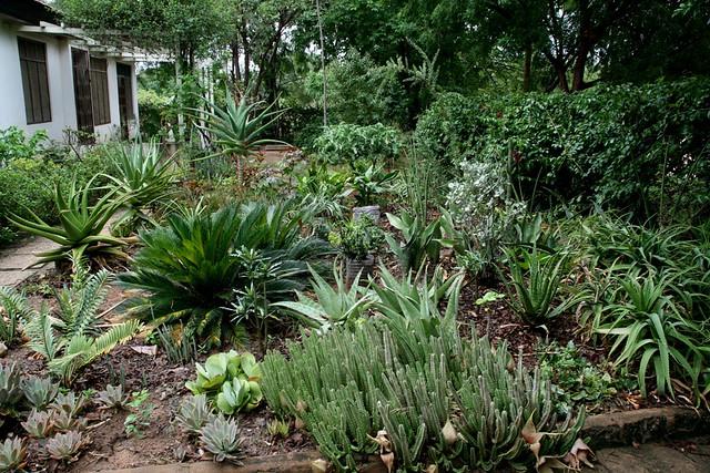 Front garden upgrade