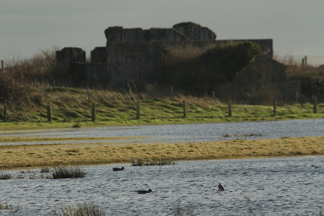 East Coast Nature Reserve