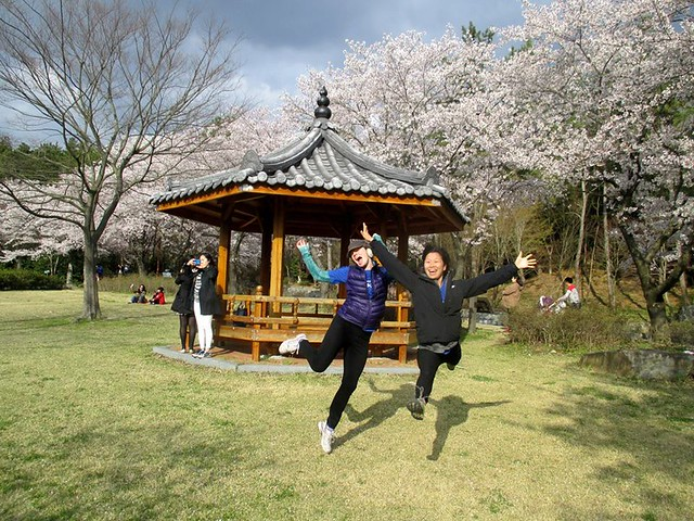 Visit Gwangju and see Cherry Blossoms