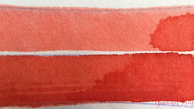 Ink Shot Review Bookbinders Red Spitting Cobra @AppelboomLaren 3