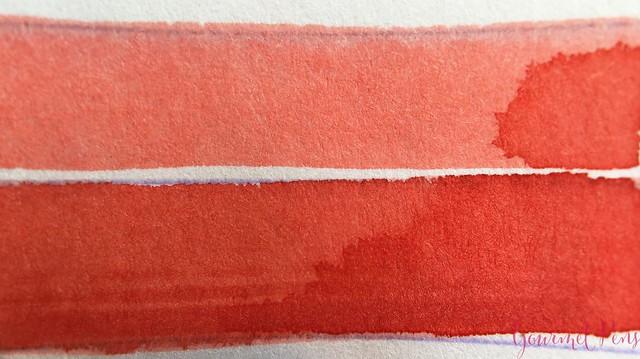Ink Shot Review Bookbinders Red Spitting Cobra @AppelboomLaren 3