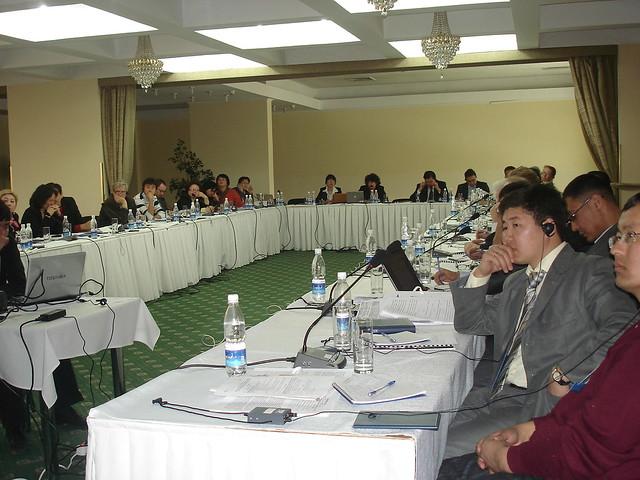 EGI I: Assessment of Energy Sector Management (2008-2009)