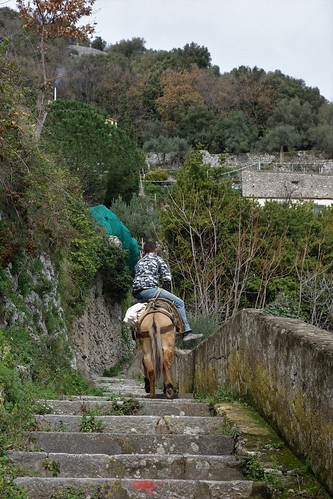 Pontone, Italy
