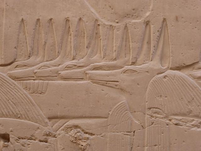 Jackal Headed Deities, Karnak, Panasonic DMC-TZ60