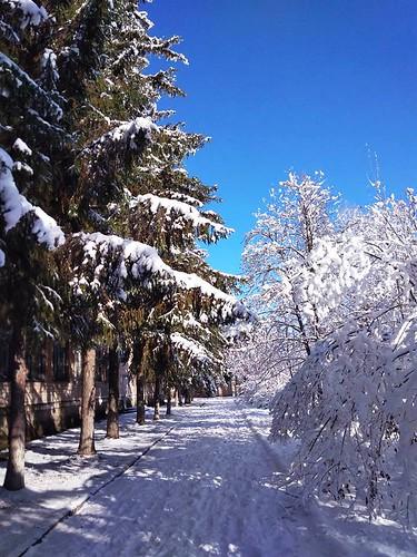 Чарівна зимова казка 15.02.18