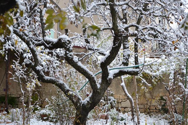 """Déficoncours """"silhouettes hivernales"""" - les participations 38716037180_816ffac5b2_z"""