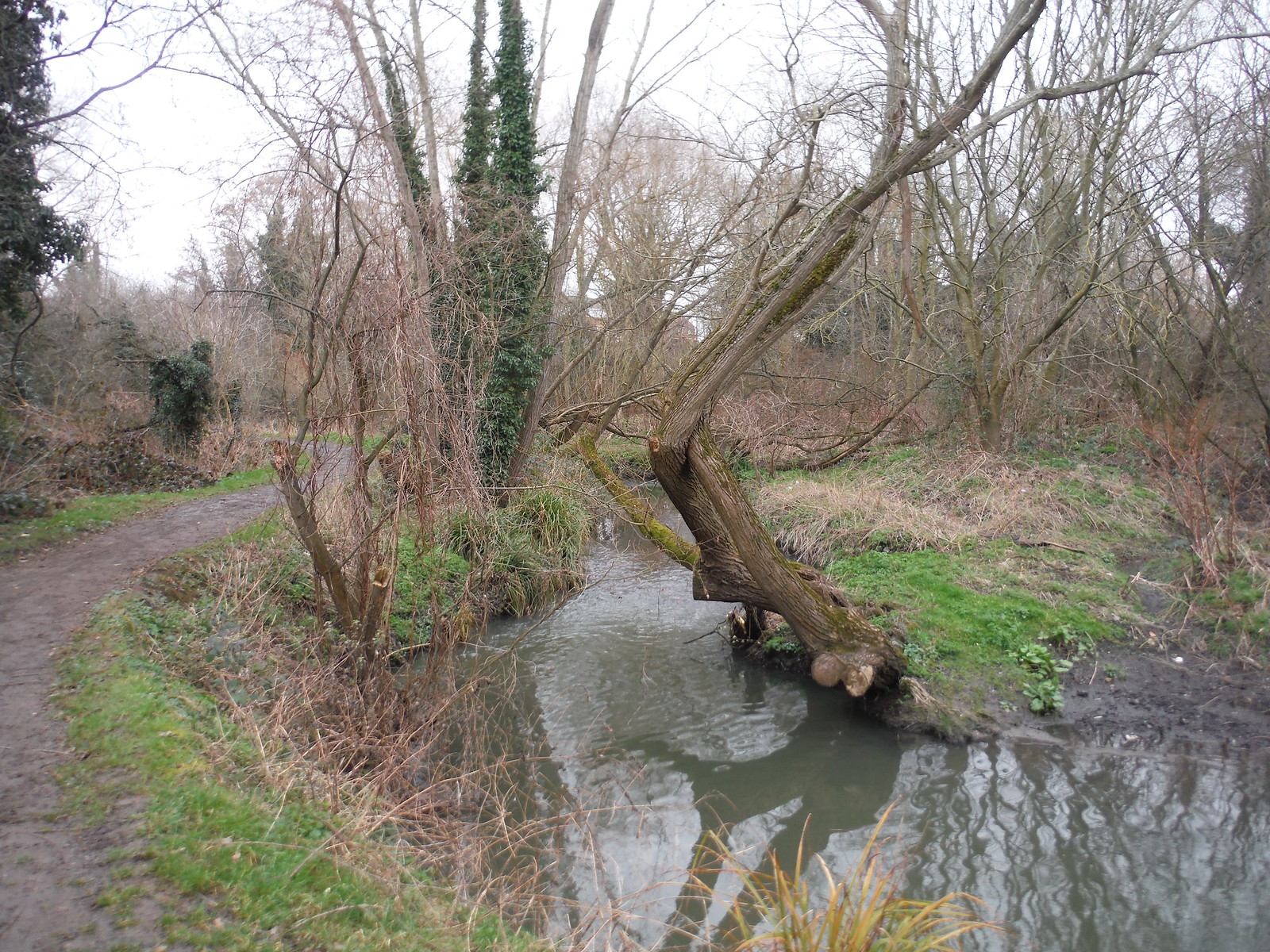 The River Rom SWC Short Walk 33 - Dagenham Parks, Rivers and Ponds