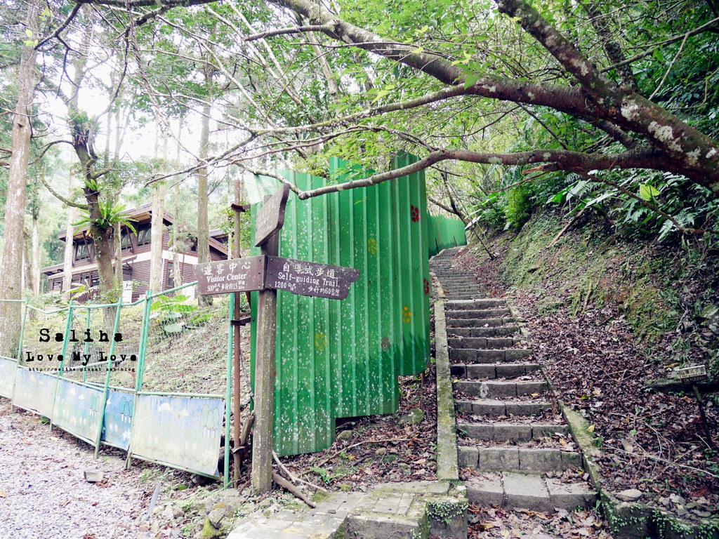 新北三峽一日遊踏青景點推薦滿月圓森林遊樂區 (8)