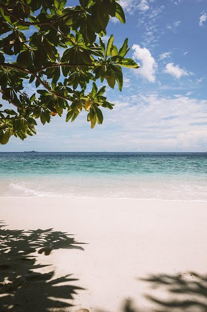 saari3 (1 of 1)