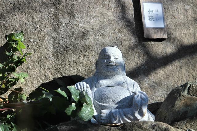 chinjyuhikawajinja-gosyuin066