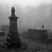 Fog in Queensbury Churchyard