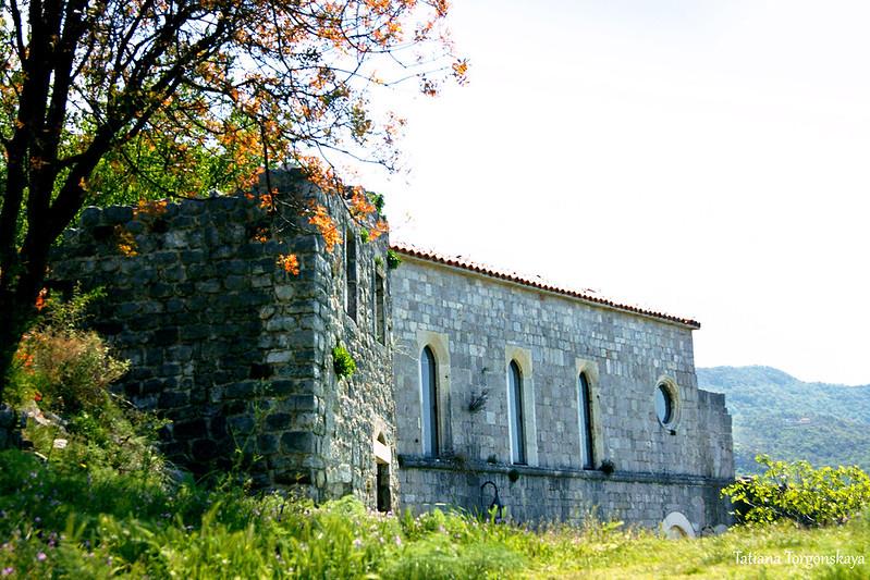 Вид на церковь Св. Венерады