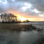 17. Jaanuar 2018 - 16:42 - Extreme tide in Biesbosch NP