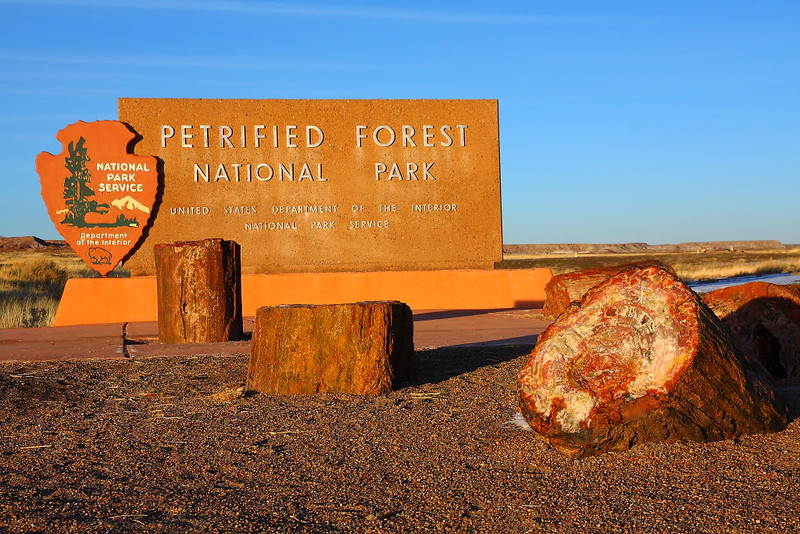 IMG_7535 Petrified Forest National Park