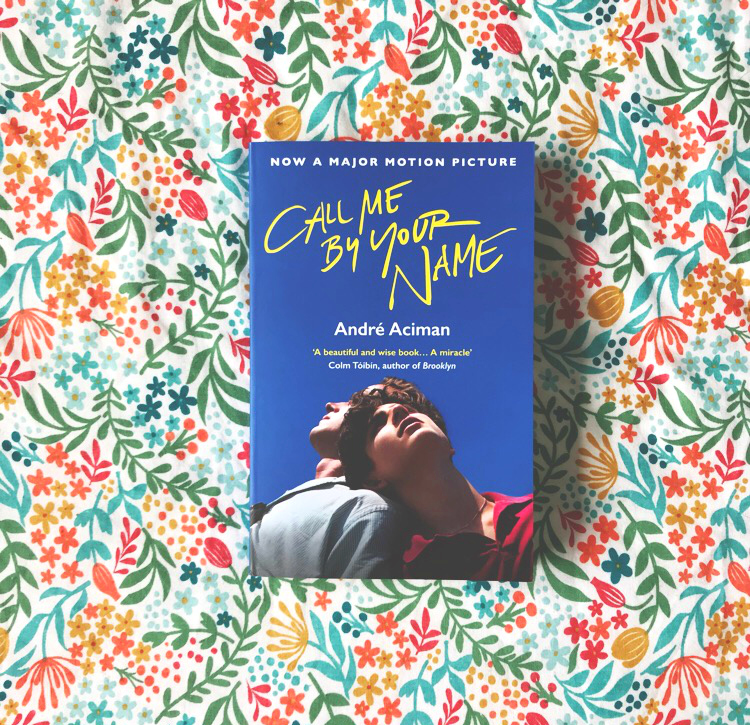 call me by your name book blog haul vivatramp andre aciman