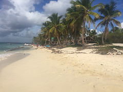 57 - Playa -  Isla Catalina