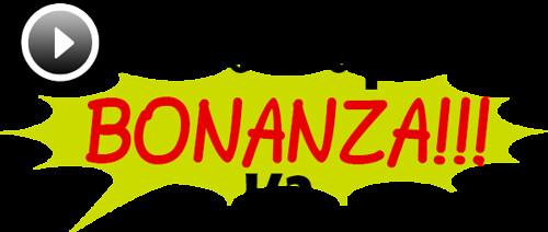VideoGraphicsBonanzaV2Logo