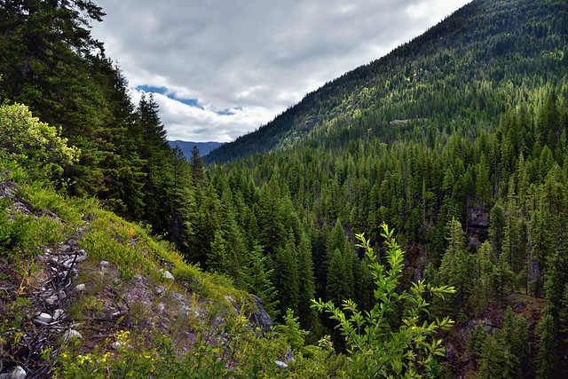 Agnes Gorge with a Nearby Mountainside Stretching off to the Horizon (North Cascades National Park Service Complex)