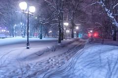 Blizzard, Yuzhno-Sakhalinsk