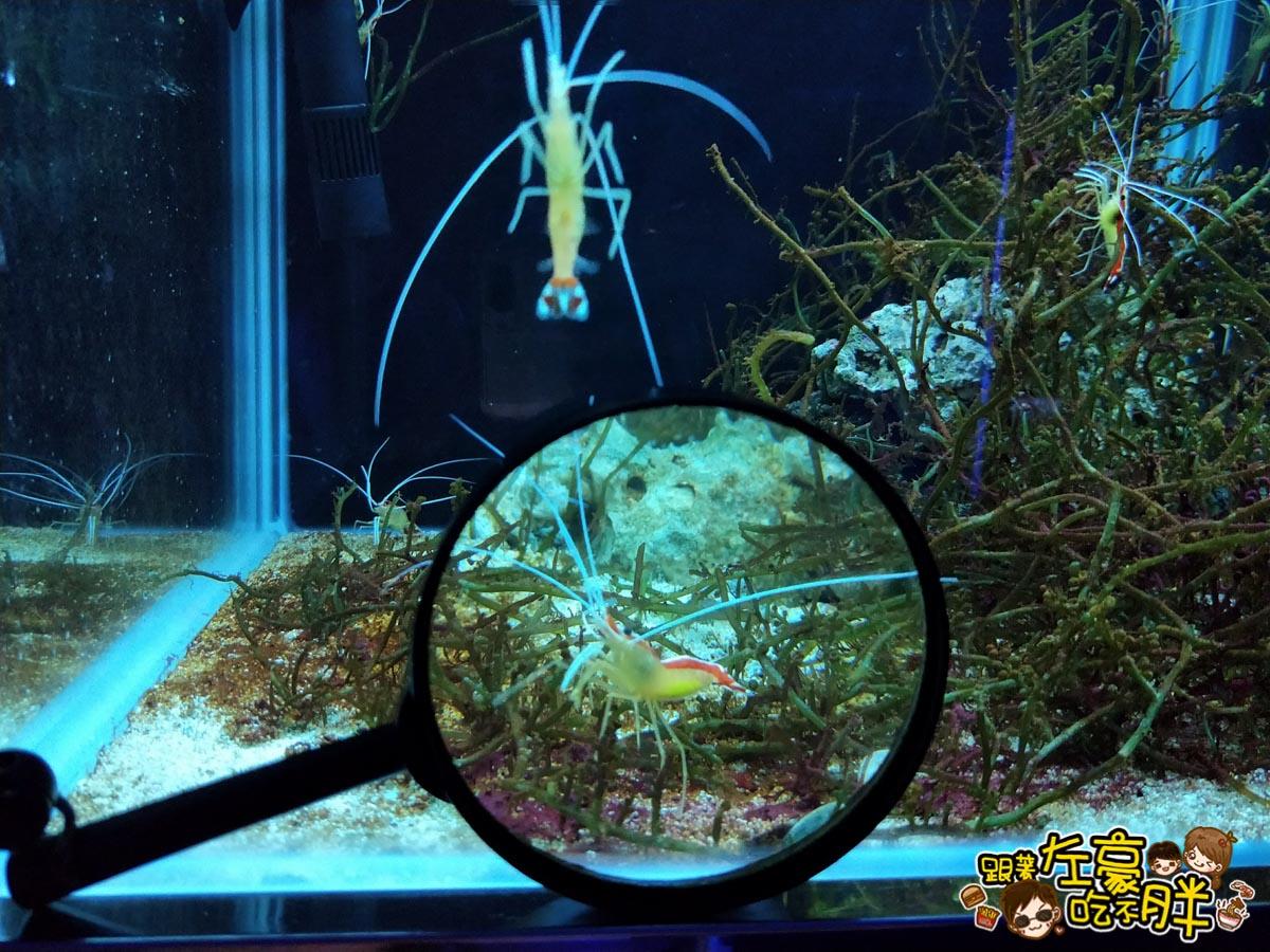 屏東生技園區國際級水族展示廳-37