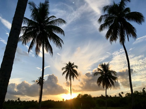 Rota da Praia de Tatuamunha - Alagoas