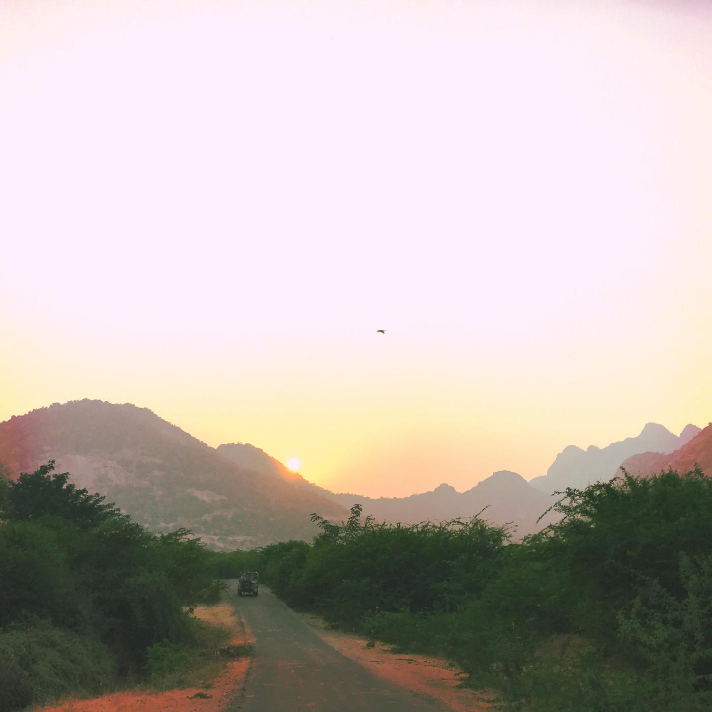 659-India-Bhenswara