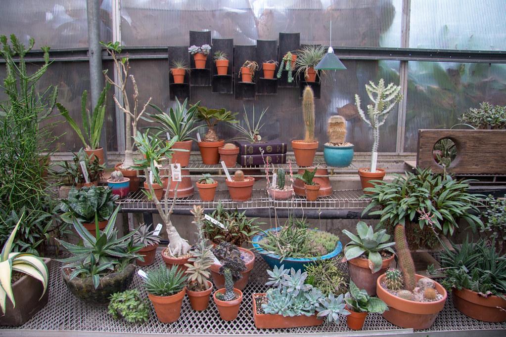 Gardener's Show House