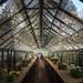 Tyntesfield Kitchen Garden
