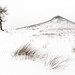 A Snowy Roseberry Topping