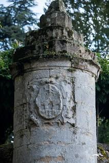 Patrimonio Soto Iruz (Custom)