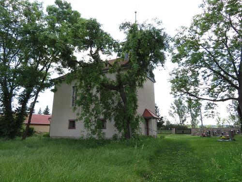 20170601 05 173 Regia Kirche Baum