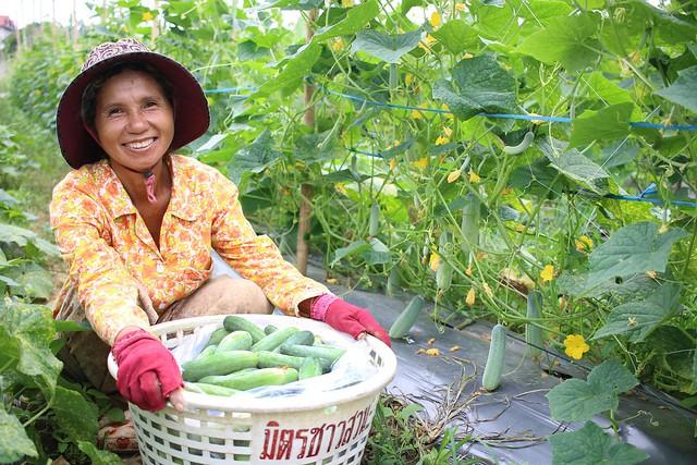 Farmer Chun Sokhom