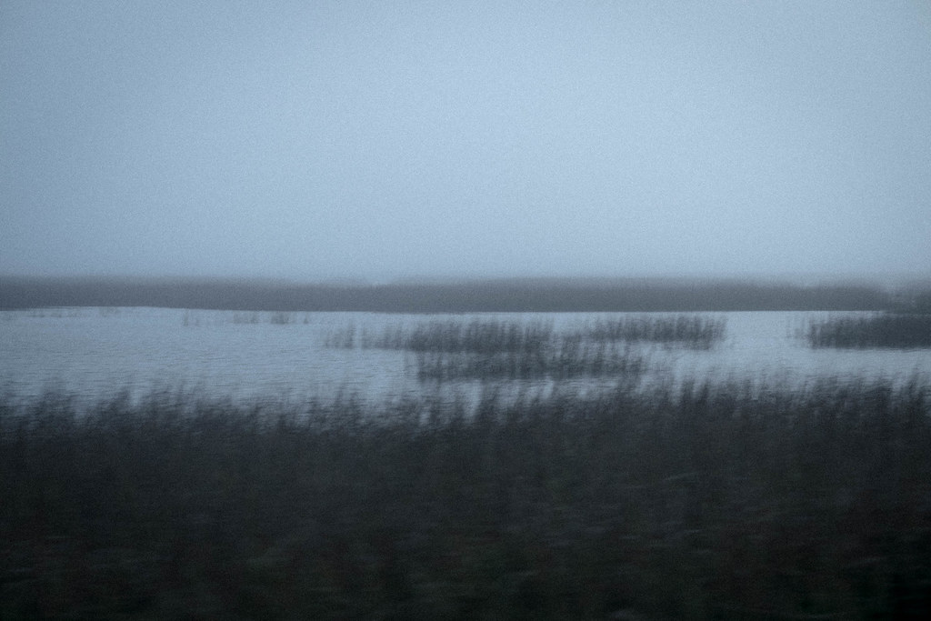 Hunting Island, SC_DSF1254 1