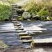Stepping Stones,Hardcastle Crag
