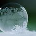365 - Image 58 - Frozen Bubble... **Explored** by Gary Neville